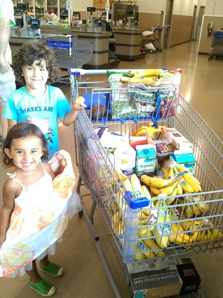 plant-based groceries and plant-based kids